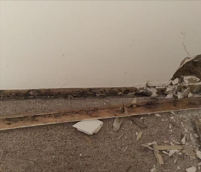Wet Floors Cause Mold Behind Untreated Baseboards Before