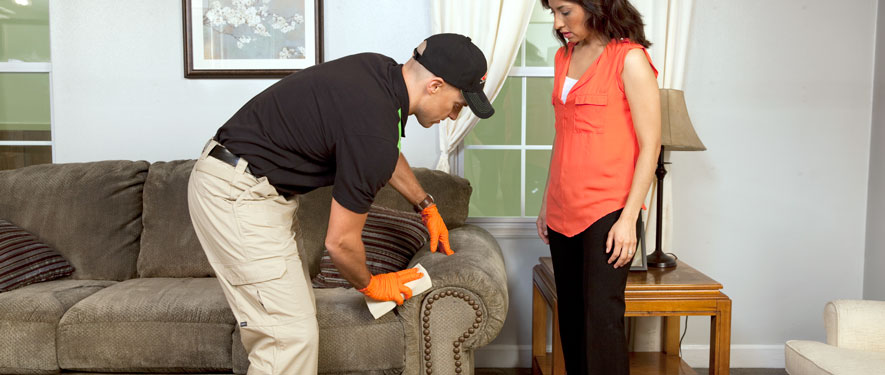 Provo, UT carpet upholstery cleaning